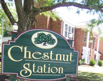 Chestnut Station Condos for Sale Hyde Park Realtor